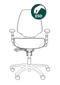 ESD 222.jpg